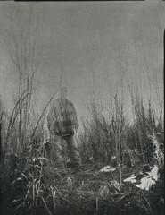 Surface (micalngelo) Tags: analog filmphoto pinhole 4x5pinholecamera pinholephotography contactprint seleniumtoned toycamera toycameraphotography