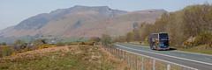 Gold Rush (Richie B.) Tags: troutbeck cumbria a66 stagecoach and north lancashire yn65xfe x4 adl alexander dennis enviro 400 scania n230ud