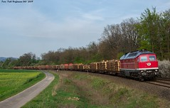 232 690 EBS bei Herzberg am 24.04.2019 (Falk Hoffmann) Tags: diesellok eisenbahn bahnhof güterzug reichsbahn dr ebs ludmilla br132 br232