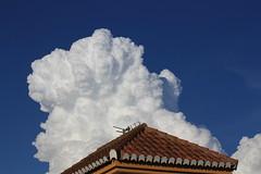 Vigilante -  EXPLORE, May 1st 2019 (Micheo) Tags: spain paloma pigeon watcher cloud cielo azul algodon cotton explore ok best blue sky white helado icecream tejado tejas roof nube