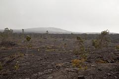 Mauna Ulu, Kilauea, Hawaii Volcanoes National Park, Hawaii (Roger Gerbig) Tags: maunaulu hawaiivolcanoesnationalpark kilauea volcano hawaii bigisland island rogergerbig canoneos5dmarkii canonef24105mmf4lisusm 3303