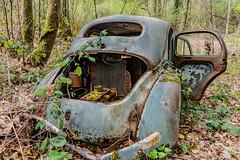 39-Moteur intact (Alain COSTE) Tags: 2019 forêt hautevienne lavarache limousin nikon ocb printemps randonnée