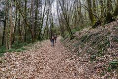 42-Montée raide (Alain COSTE) Tags: 2019 forêt hautevienne lavarache limousin nikon ocb printemps randonnée eymoutiers france