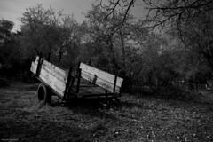 Childhood memories (eskstreetph) Tags: canon eos550d kseniaeskstreet outside outdoor blackandwhite black white grey chilhood memories barrow countryside bagnoaripoli florence tuscany italy