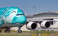 "F-WWAF // JA382A All Nippon Airways Airbus A380-841 MSN 263 ""Kai the flying Turtle"" (Florent Péraudeau) Tags: fwwaf ja382a all nippon airways airbus a380841 msn 263 kaitheflyingturtle kai avgeeks aviationlovers"