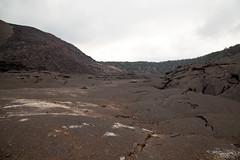 Kilauea Iki, Hawaii Volcanoes National Park, Hawaii (Roger Gerbig) Tags: kilaueaiki hawaiivolcanoesnationalpark kilauea volcano hawaii bigisland island rogergerbig canoneos5dmarkii canonef24105mmf4lisusm 3049
