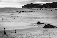 A day in the beach 1 (Carlos Ingala) Tags: españa spain cantabria cantabriainfinita playa beach trasmiera trengandín noja landscape bw artistic lighgts shadows sunset puesta