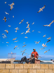 Under the Flock (Ash and Debris) Tags: africa flock urbanlife market morocco street people birds fishmarket seagulls flight streetlife bird wall sky guys seagull rest essaouira
