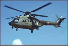 AS332 M1 T-311 2216 Bex aout 1998 (paulschaller67) Tags: as332 m1 t311 2216 bex aout 1998