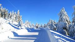 Winter Wonderland (Tobi NDH) Tags: winter schnee snow brocken brockenstrase sky tree nature natur harz oberharz sachsenanhalt saxonyanhalt germany deutschland winterlandschaft