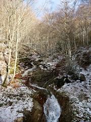 Aigoual, Aurore printanière (laudato si) Tags: aigoual cévennes neige snow montagne mountain landscape gard france aurore sunrise sun