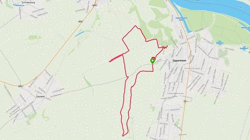 Wanderung Rheinterrassen bei Oppenheim (Screenshot Garmin Connect)