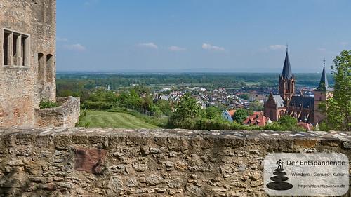 Burgruine Landskron: Blick auf Rheinebene und Katharinenkirche