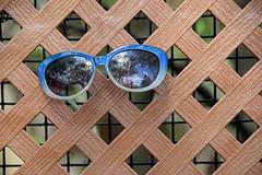 Sunglasses Lost (MTSOfan) Tags: hff fence sunglasses fencefriday lattice lostandfound misplaced