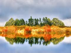 A New Zealand Reflection (Trey Ratcliff) Tags: glenorchy newzealand trees reflection reflections pool pond lake leaves autumn fall cloud mist treyratcliff stuckincustoms stuckincustomscom aurorahdr hdr hdrtutorial hdrphotography hdrphoto photography workshop learn landscape