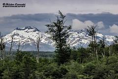 Camino a Ushuaia 6 (© hacfoto) Tags: montaña hielo nieve nubes