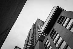 Lignes obliques (LetNoun) Tags: skyscraper architecture centreville downtown minimal plonge printemps promenade spring montreal noiretblanc bw