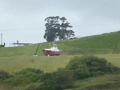 P1060608 (jesust793) Tags: barco parque arbol verde hierba abril coruña