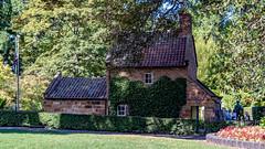 Captain Cook's Cottage, Fitzroy Gardens, Melbourne, 18 March 2019 (3) (BaggieWeave) Tags: australia captaincookscottage fitzroygardens melboune victoria melbourne