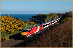 Another 91 (Resilient741) Tags: class 91 91113 91013 lamberton burnmouth scotland england border coast east london north eastern railway railways rail train trains br british uk united kingdom bamburgh castle sea gorse yellow landscape vtec electric loco locomotive hauled passenger