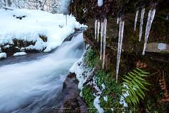 Rincones invernales (Fotografias Unai Larraya) Tags: paisajes largaexposición naturaleza salvaje río valledearce cascadas invierno nieve frio hielo helecho navarra ngc