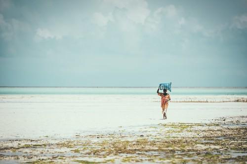 Zanzibar pictures