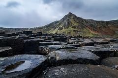 ... where giants once tread ... (Jane Friel) Tags: causewaycoast giantscauseway coantrim naturallight naturalbeauty naturalworld basalt basaltrocks rocks rocky janefriel janefriel2019