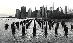 Lower Manhattan Skyline (Anthony Mark Images) Tags: woodenpierstumps lowwermanhattanskyline water reflections brooklynbridgepark brooklyn newyork nyc bigapple monochrome blackandwhite ripples eastriver nikon d850 flickrclickx absoluteblackandwhite