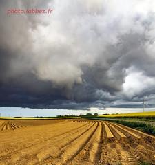 Champs labouré sous un nuage (louis.labbez) Tags: 2019 59 france labbez nature nuage paysage sky nord voilier campagne champs ciel colza labour fleur flower jaune noir route road hautsdefrance agriculture
