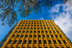 """Paint the Sky Yellow (""""The Wanderer's Eye Photography"""") Tags: 2019 bangalore canoneos450d canoneosdslr canoneosrebelxsi digitalphotography google india london photography rubenalexander susanalexander thewandererseyephotography uk abstract architectural architecture architecturephotography blue bright building city cityscape color colorful composition concept design european facade frame googleoffice londoner londonist lookup modern paint pattern perspective repetition shape sky straightline subject summer theartofcomposition travel urban view visitlondon vivid wall yellow yellowwall"""