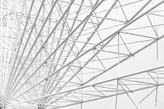 high key tubes (MAICN) Tags: lines bw technisch blackwhite monochrome geometrisch technical schwarzweis highkey mono linien einfarbig 2019 geometry sw