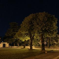 in passione domini (Paolo Cozzarizza) Tags: italia friuliveneziagiulia pordenone spilimbergo scorcio alberi croce piazza