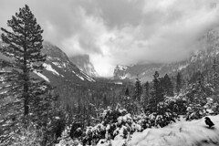 Yosemite - Tunnel View 2 (lycheng99) Tags: tunnel tunnelview yosemite yosemitenationalpark yosemitevalley blackandwhite monochrome landscape nature explore travel snow winter ice blackbird raven tree clouds elcapitan threebrothers weather overcast