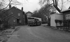 Landelijk noord (railfan3) Tags: amsterdam amsterdamse amsterdams amsterdamnoord buiksloterweg gvb amsterdamsebussen stadsbussen stadsbeeld standaardbus buslijn32 bussen1977 bus buses bussen autobussen hainjecsa wijnrodestandaardbussen ouderwetse oudewagens vintagebussen retrobussen busbuslijnen oudebussen