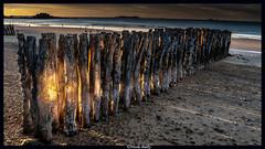 Sous le feu des brise lames (under the fire of the breakwater) (pileath) Tags: goldenhours couchersoleil soleil plage breakwater brise lames saint malo france beach sunshine low key