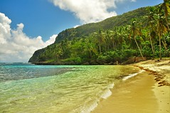 playa madama, paradise (Estrellia Palantzas) Tags: playa madama dominican beach wild tropical palm jungle green water lagoon