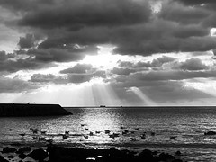 IMG_1014-OB (onurbayic) Tags: luminance blackandwhitephoto blackandwhite bw sun sea sky cloud iphonex birds sunset landscape wave dramatic
