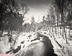 Criss-cross winter rivers (DelioTO) Tags: 4x5 blackwhite cliff d23 f250 fall fomapan100 garden historical holiday lake landscape november ontario pastures pinhole toned trails trip woods