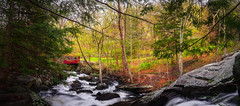 Southford-Falls-State-Park-Southbury-CT-USA_05022019-142-Pano (LBSimmsPhotography) Tags: rock southfordfallsstatepark southfordfalls stream view background cascade connecticut culture forest lake landscape natural nature ngc northamerica outdoor river scenic serene spring travel trees water woodland southburyct