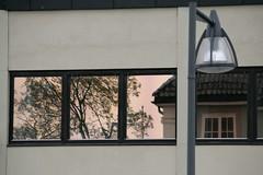 windows, reflections and a streetlight (EllaH52) Tags: building house houses windows reflections trees streetlight lamppost wall architechture