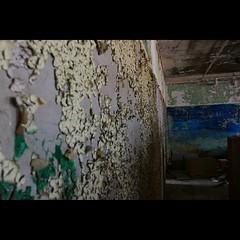 Flaked (CaptJackSavvy) Tags: urbandecay urbanexploration urbanex urbex urbanspelunking abandonedbuilding abandoned trespassing peelingpaint decay
