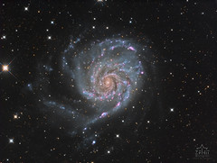 M101 - Pinwheel Galaxy (ZENIT Observatory) Tags: zenit pinwheel galaxy galassia girandola observatory osservatorio manciano telescope telescopio gso truss riccardi 10micron montatura mount moravian ccd kaf8300 lrgb astrodon deep sky scopedome cielo notte astronomia astronomy