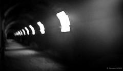Où me mèneront ces réflexions ? (Alexandre DAGAN) Tags: cryptoportiques arles camargue bouchesdurhone france noir blanc black white noiretblanc noirblanc blacknwhite blackandwhite blackwhite panasoniclx100 panasonic lx100 dmclx100 workshop photo balade walk flou blur