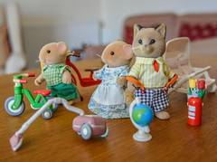 Sylvanian Families (daisyglade) Tags: toys animals wellloved family tarantulafamily characters catandmicesetup