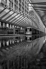 TAKE ME HOME (Nenad Spasojevic) Tags: spasojevic sonyimages nenografiacom explore train sonyalpha l monoart winter movement waterreflections white exploration windycity nenadspasojevicart black shadow sony reflections ltrain nenad springsnowstor blackandwhite city perspective symmetry water takemehome chi contrast snowinspring snowstorm 2019 trainstation fineart architecture snow a7riii light chicago illinois il