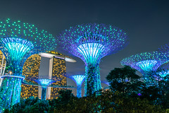 Singapore - 144 (coopertje) Tags: singapore asia azie gardensbythebay marina bay sands hotel casino mall park garden tree giant enormous artificial architecture lights evening dark nightshot supertreegrove lightshow laser blue