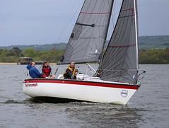 FA finishes (antrimboatclub) Tags: antrimboatclub boat sail sailing ireland sixmilewater loughneagh antrimbay antrim
