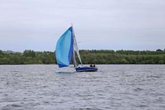 Bull kite (antrimboatclub) Tags: antrimboatclub boat sail sailing ireland sixmilewater loughneagh antrimbay antrim