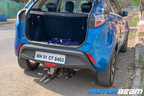 Tata-Nexon-Long-Term-6