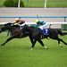 Fierement - 159th Tenno sho (Spring) - Kyoto Racecourse